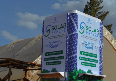 Solar Freeze