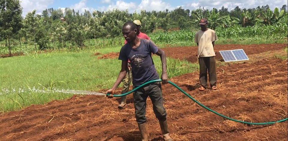 Un homme utilise le systèmeSunny irrigation